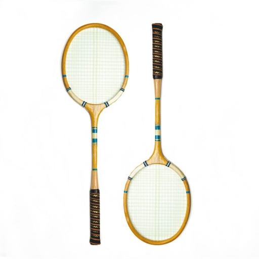 Backyard Badminton Set